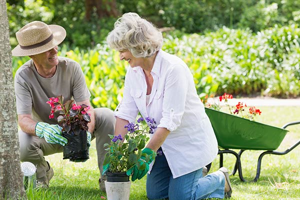 AgeBetter Connect Program: man assisting an elderly woman in a garden.